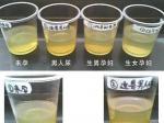 用酒精可测试生男生女?怎样用酒精测试生男生女?